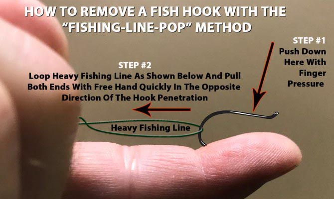 Fiskekroksutdragare
